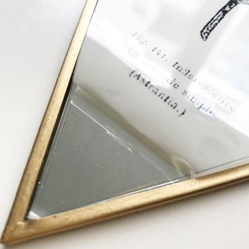 herbier-tendance-diy-gravure-miroir-2