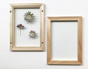 herbier-tendance-diy-vegetal-2
