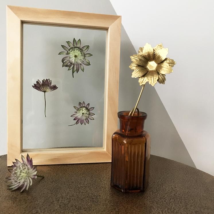 herbier-tendance-diy-vegetal-4