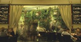 tendance-herbier-lieux-barbotaniste1