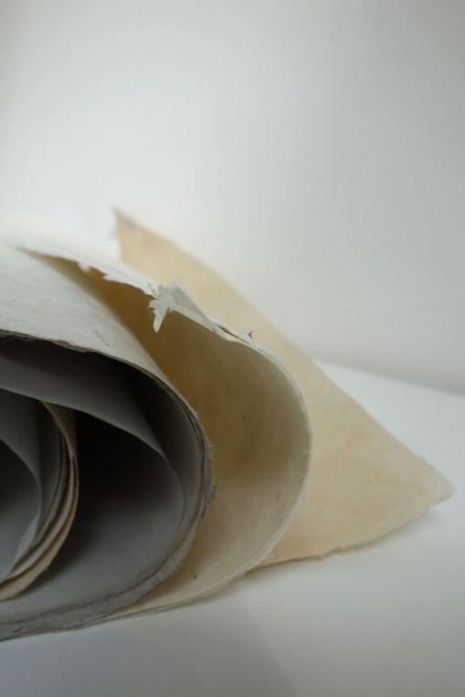 dscnadia-gallardo-papiers-3
