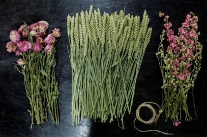 @ france fleurs