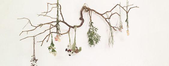 trouver-fleurs-séchées-jeanneparis-11