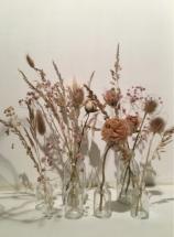 trouver-fleurs-séchées-jeanneparis-3b