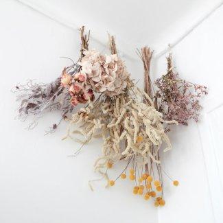 trouver-fleurs-séchées-prairies-3