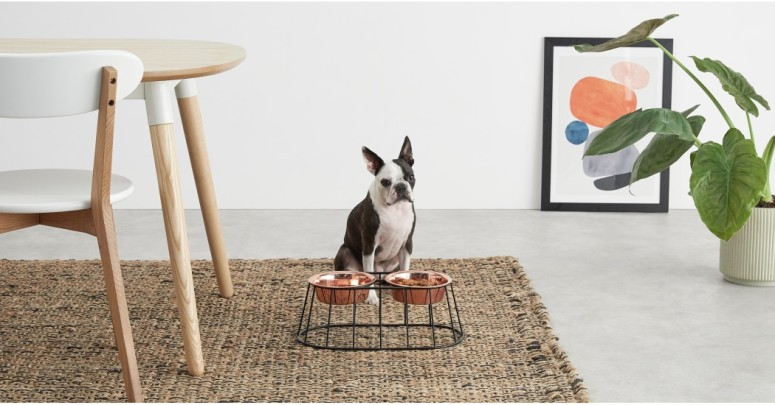 mobilier-animaux-chat-chien-pet-design-4