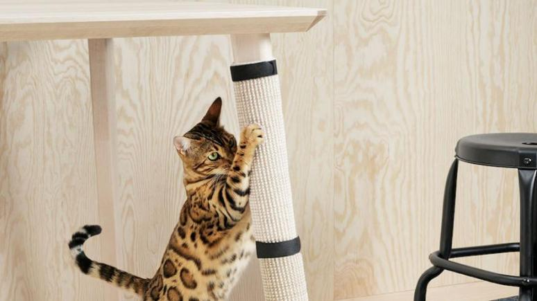 mobilier-animaux-chat-chien-pet-design-50